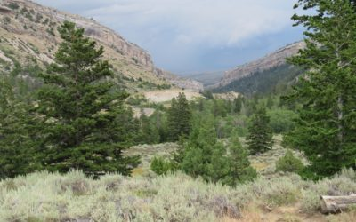 Sinks Canyon State Park, Wyoming