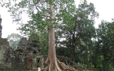 Random Temples, Cambodia